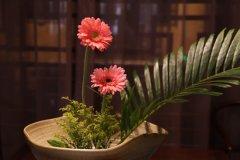 茶饰摆件--茶楼茶社的花草摆放方法