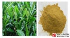 为什么茶叶具有很好的美容减肥功效