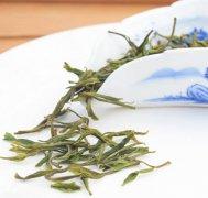 安吉白茶的制作工艺具体介绍