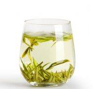 安吉白茶都有哪些保健功效与作用?