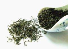 信阳毛尖属于什么茶叶?