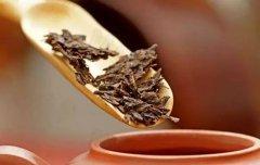 端午节送礼|端午喝点普洱茶会更好