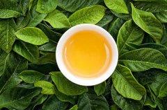 高级茶艺师评茶员必须知道的茶叶术语