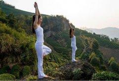 瑜伽和茶道的互通之处