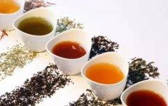 茶叶知识百科,不要让喝茶输在起跑线上!