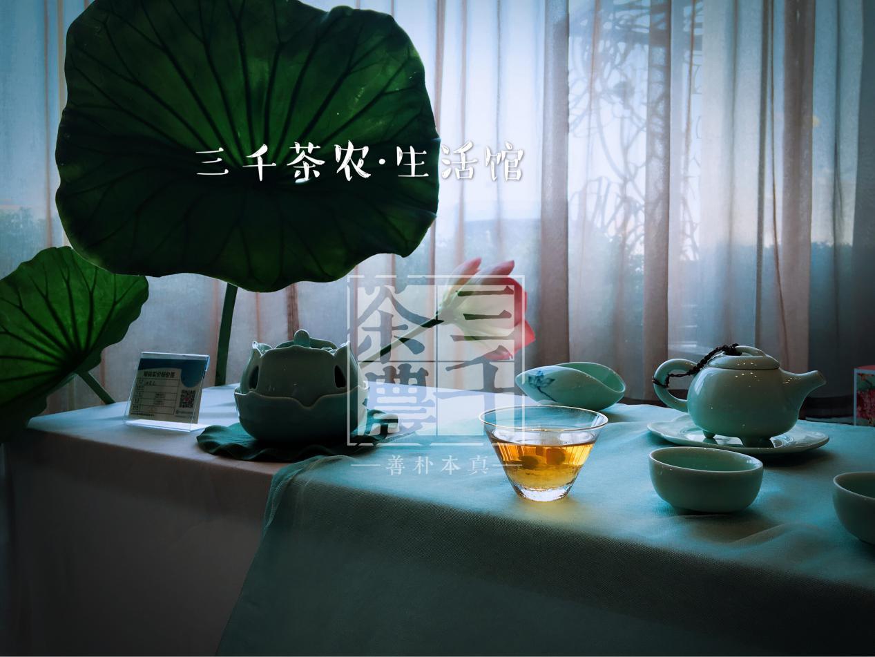 开茶馆赚钱吗?为什么开茶馆的越来越多?